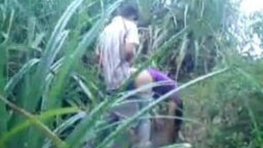 cpl fucking in sugarcane field caught on camera