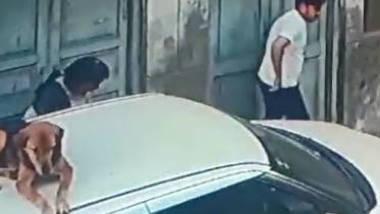 Desi lover spy video 1